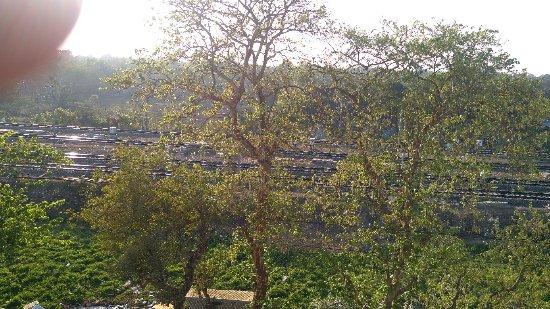 Nabadwip ภาพถ่าย