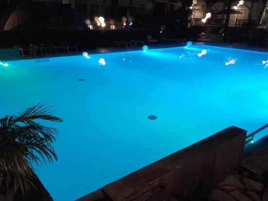 Hôtel Les Créoles : La piscine