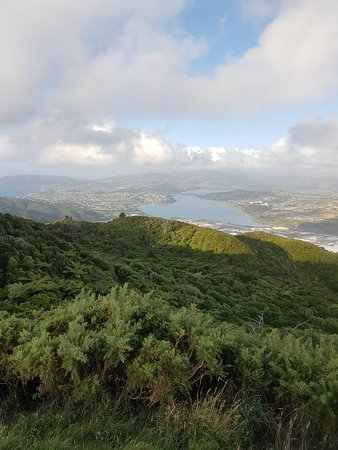 Porirua Bed and Breakfasts