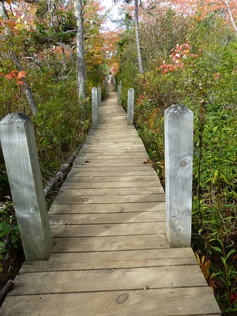 Tiverton, Canadá: Easy to walk on the pathways