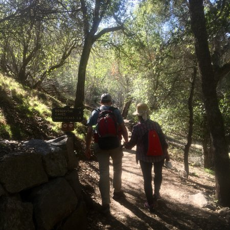 Pinnacles National Park: photo5.jpg