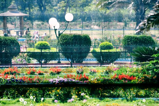 Nehru Park, Hirakud, Well maintained park. Very beautiful flowers and birds. Calm and quiet plac