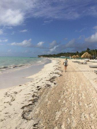 Beautiful ocean, okay beach, beautiful people, top notch food and entertainment