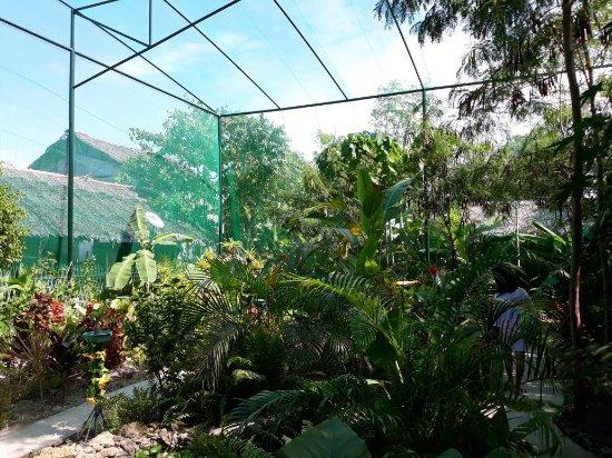 Jardín de Mariposas de Santa Fe