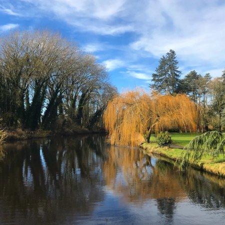 Straffan, Ireland: photo2.jpg