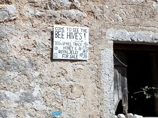 Old Perithia: bees