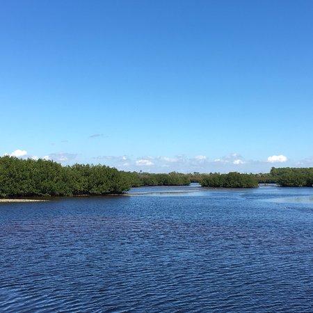 Upper Tampa Bay Park : photo0.jpg