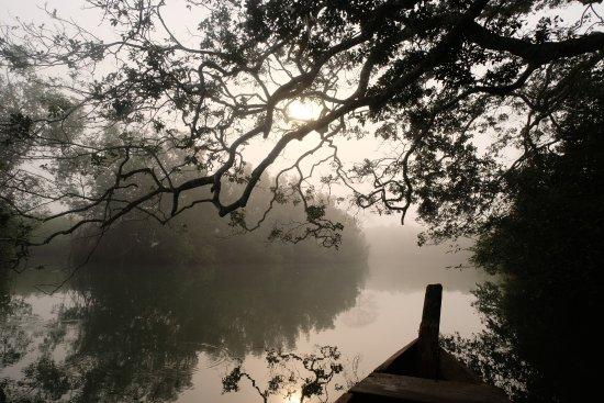 Busua, Ghana: Butre river canoe trip with Tony