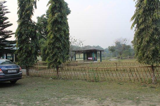 Nameri National Park-billede