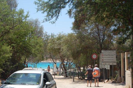 Spiaggia di Tuerredda : Stradina di accesso,gia' capisci cosa ti aspetta..