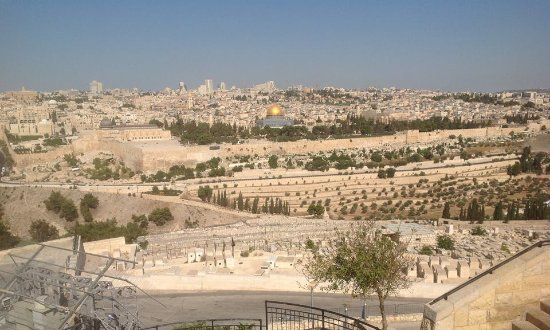 Churchill Israel Tours