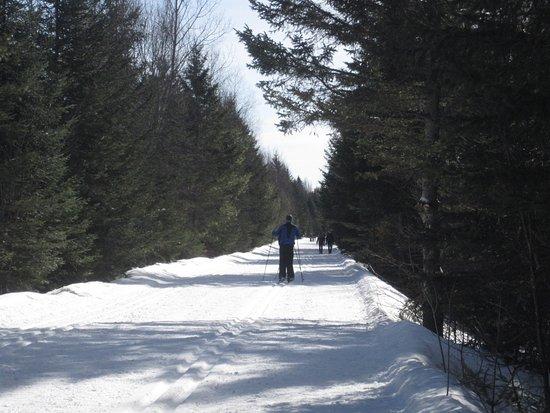 Val David, Canada: Piste ski de fond et marche le P'tit train du nord
