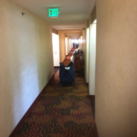 Destiny Palms Hotel Maingate West: photo1.jpg