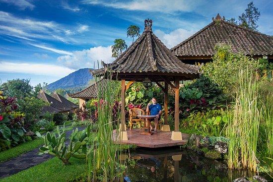 Baturiti, Indonésia: IMG_20180218_222805_251_large.jpg