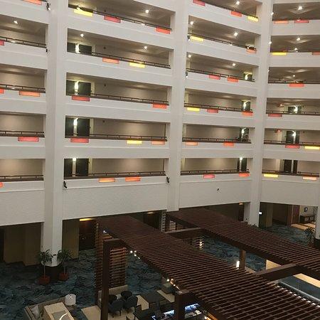 Hilton Phoenix/ Mesa: photo0.jpg