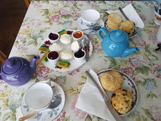 Thorney, UK: Cream Tea