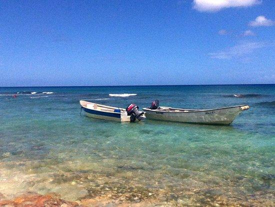 La Romana Province, Dominikanische Republik: IMG_20170601_142639_large.jpg