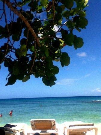 La Romana Province, Dominikanische Republik: IMG_20170601_142700_large.jpg