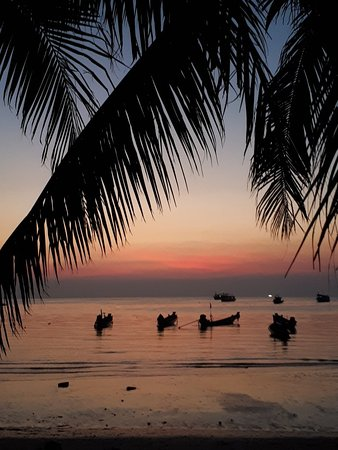 Island Spa Resort : 20180219_002220_large.jpg