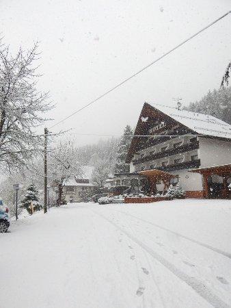 Schenkenzell, Tyskland: Schönes - sehr schneereiches - Wochenende im Winterhaldenhof verbracht