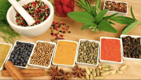 Monteverde, Costa Rica: Ayurvedic Medicinal Herbs
