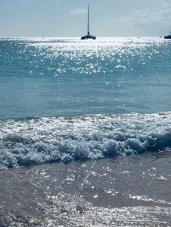 Carlisle Bay: photo4.jpg