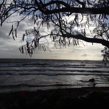 Finca San Juan de la Isla: photo2.jpg