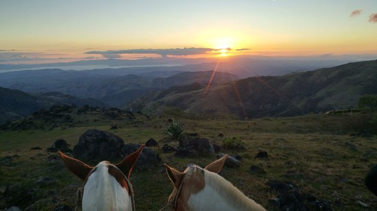 Sabine's Smiling Horses: Sunset view with Pinto and Cacique.