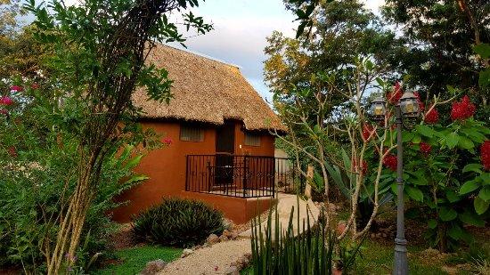 Santa Elena, Mexico: IMG-20171212-WA0037_large.jpg