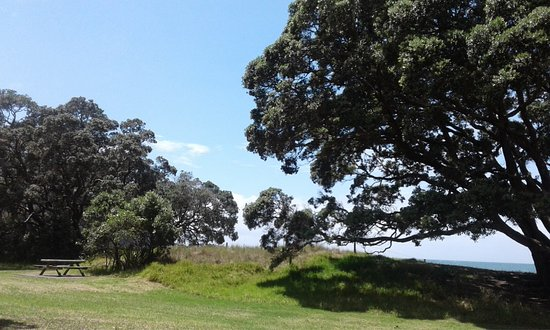 Waiwera, New Zealand: Lovely pohutakawa trees provide good shade.