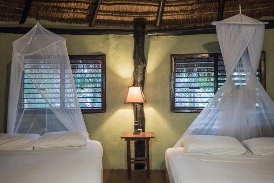 Las Palmas Maya: The treetop suite