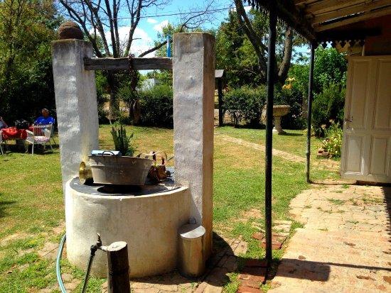 Villa Ruiz, الأرجنتين: jardin con aljibe en lo que vendria a ser el frente