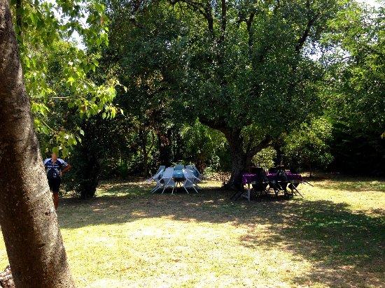 Villa Ruiz, Argentina: jardin trasero