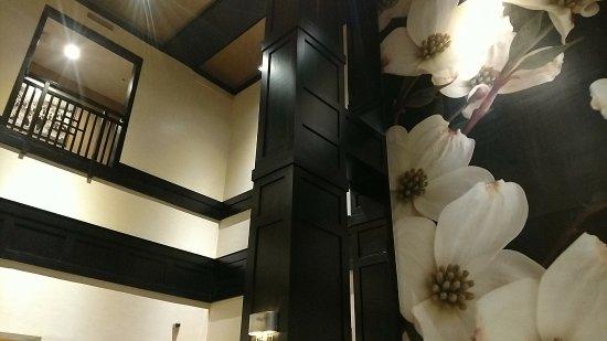 Hampton Inn & Suites Chicago - Downtown: IMG_20180215_225346043_large.jpg