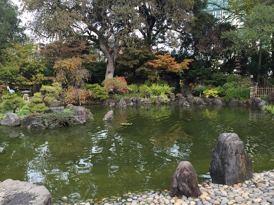 San Mateo, CA: The Japanese Tea Garden