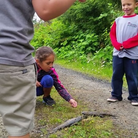 Olympic Peninsula Guide Service: teaching these kids some trout fishing
