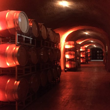 Clos Pegase Winery: photo2.jpg