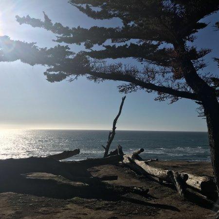 Moss Beach, CA: photo3.jpg