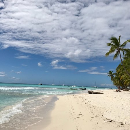 Isla Saona: photo3.jpg