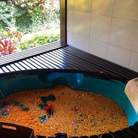 Seririt, Indonesia: Zen Resort Bali