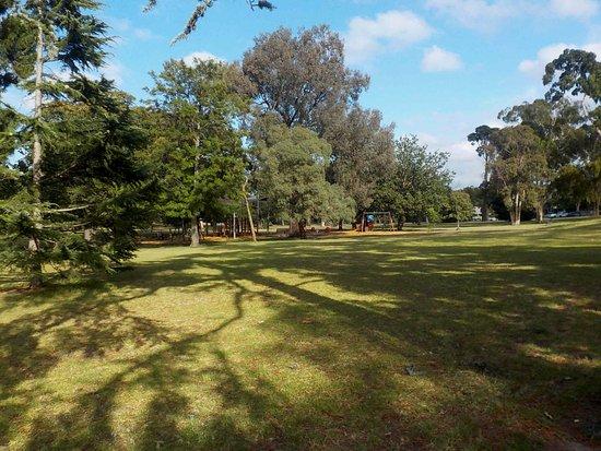 Landcox Park: Playground