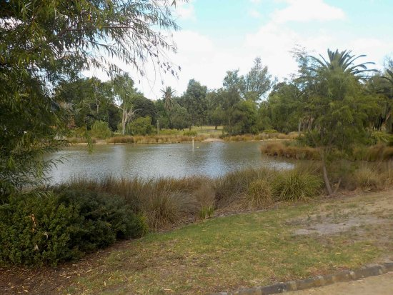 Landcox Park: Duck Pond
