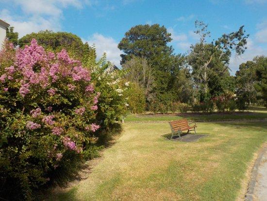 Landcox Park: Seating in sun