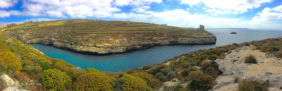 Sannat, مالطا: Amazing dive site at Ta Cnec!