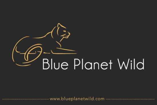 Blue Planet Wild Tours