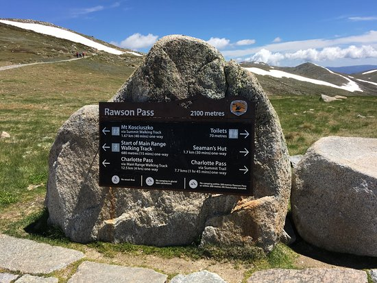 Summit Walk/Main Range Trail: Walking to the top of Oz
