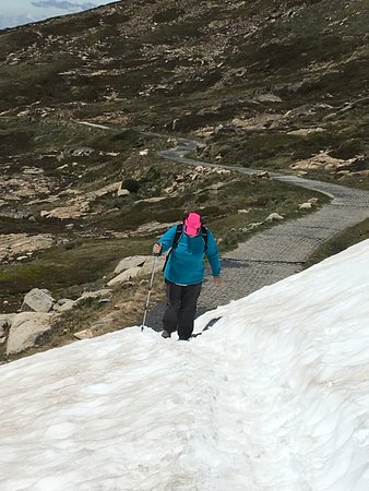 Summit Walk/Main Range Trail: Still snow in December