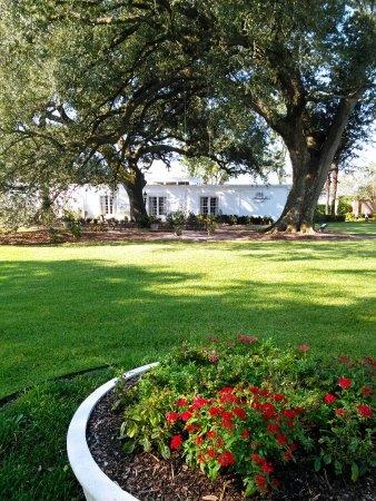 White Castle, لويزيانا: IMG_20170924_095153_large.jpg