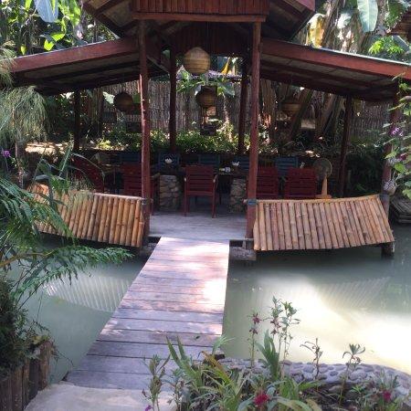 Kuang Si Falls Butterfly Park : photo8.jpg