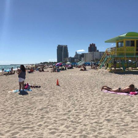 Photo2 Jpg Picture Of Beacon South Beach Hotel Miami
